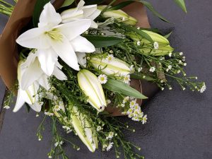 White lily 'Eco' bunch
